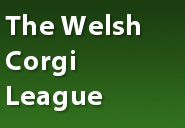welsh-corgi-league